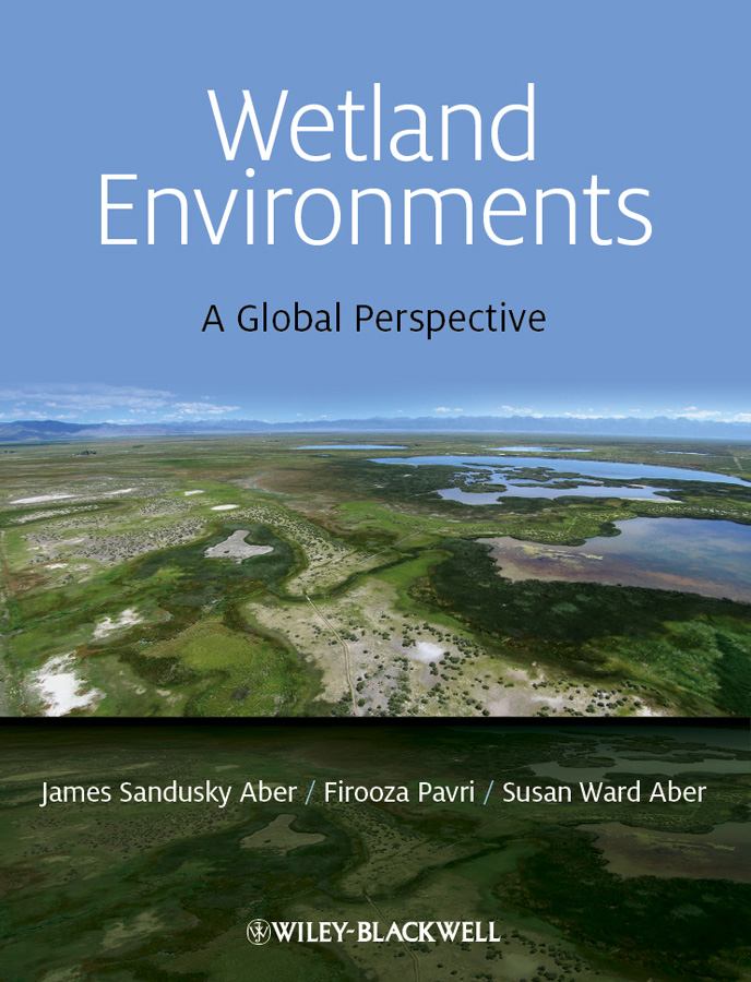 Wetland Environments. A Global Perspective
