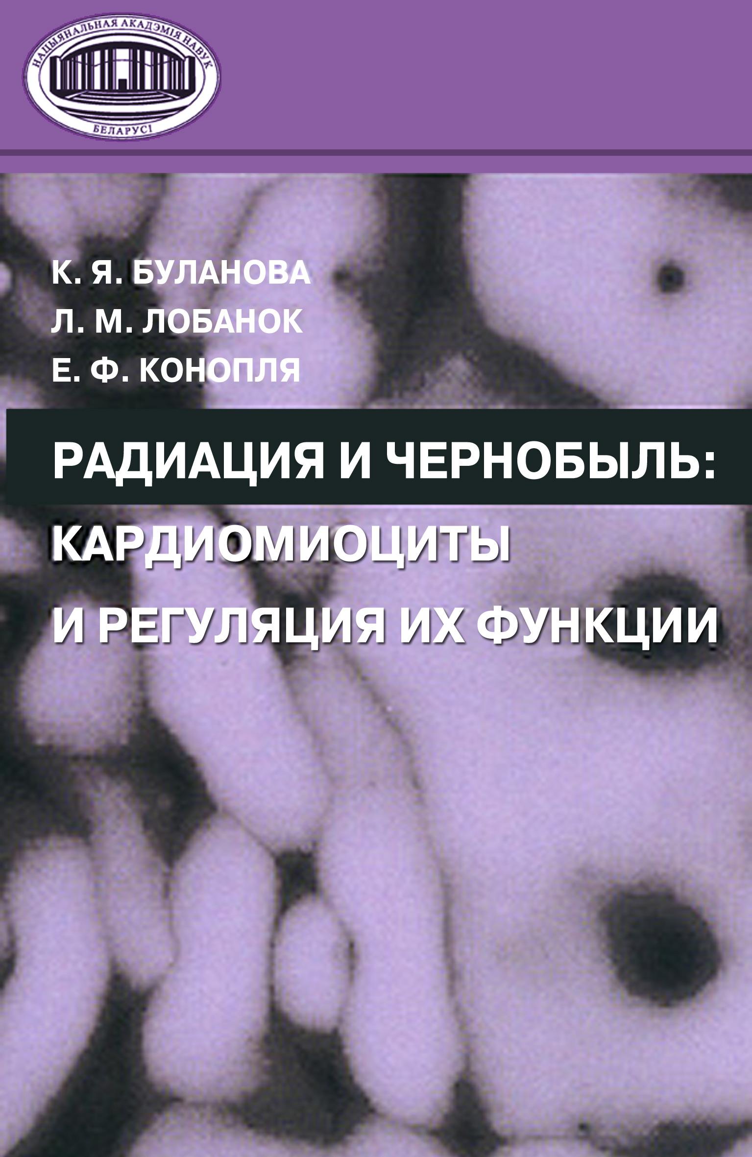 Радиация и Чернобыль. Кардиомиоциты и регуляция их функции
