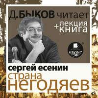 Есенин С. Страна негодяев в исполнении Дмитрия Быкова + Лекция Быкова Д.
