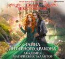 Академия Магических Талантов. Тайна янтарного дракона