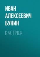 Кастрюк