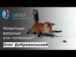 Животные: вредные или полезные?