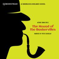 The Hound of the Baskervilles - A Sherlock Holmes Novel (Unabridged)