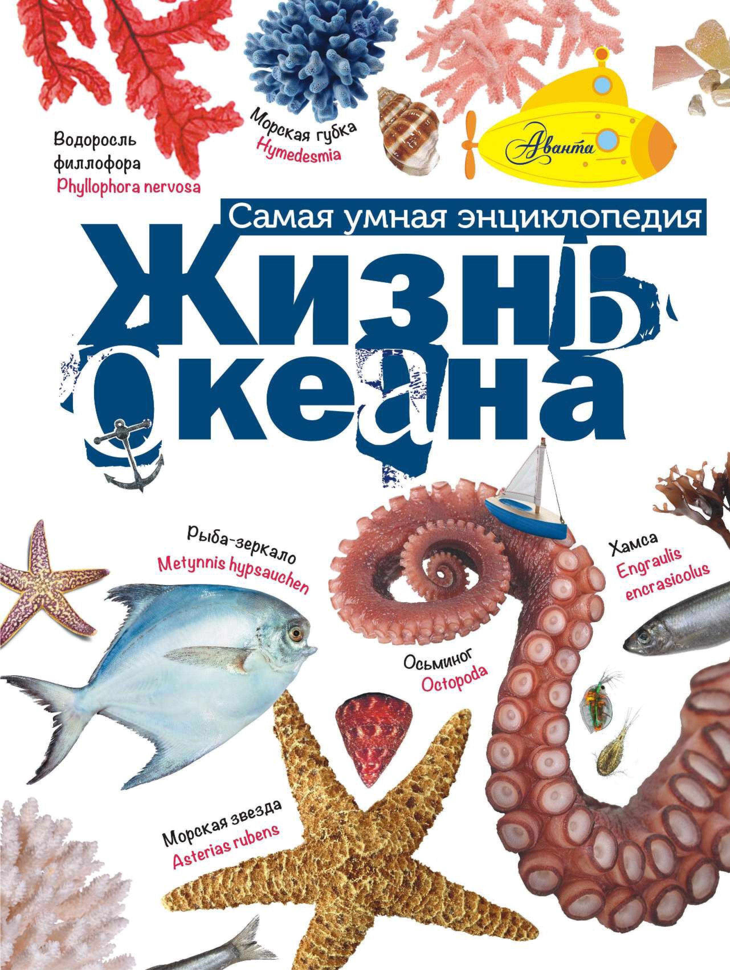 А. В. Тихонов Жизнь океана тихонов а в жизнь океана