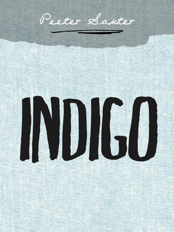 Peeter Sauter Indigo tiit sepa eelsoodumus armastada esimene raamat