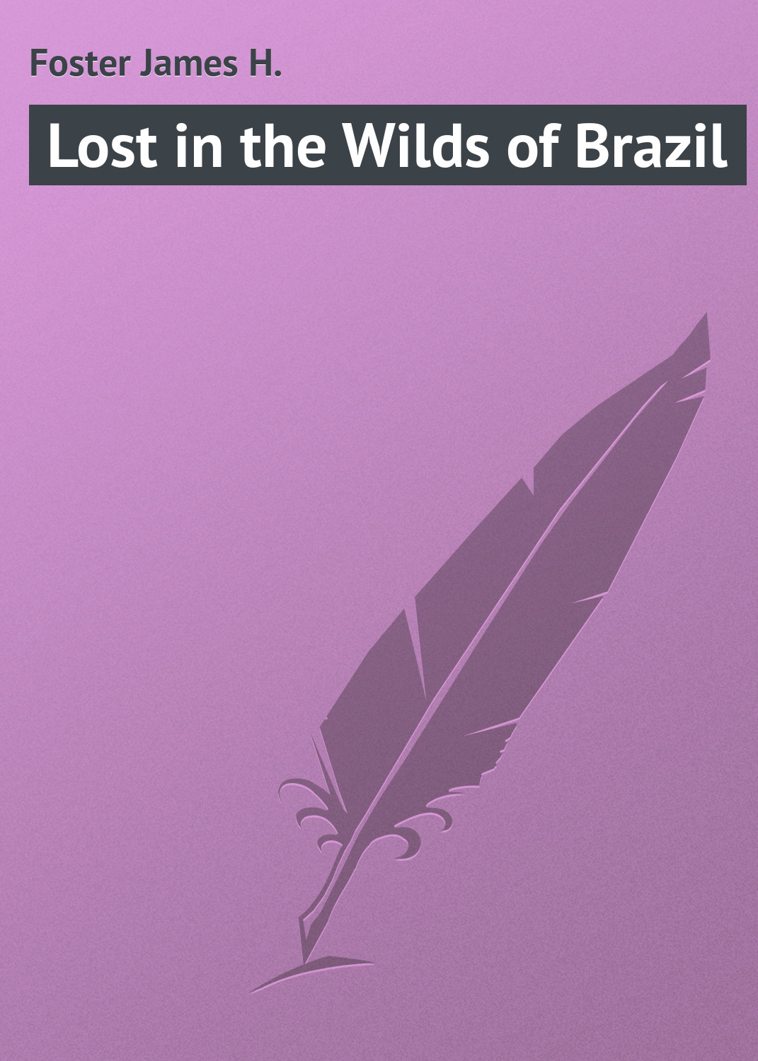 цена Foster James H. Lost in the Wilds of Brazil онлайн в 2017 году