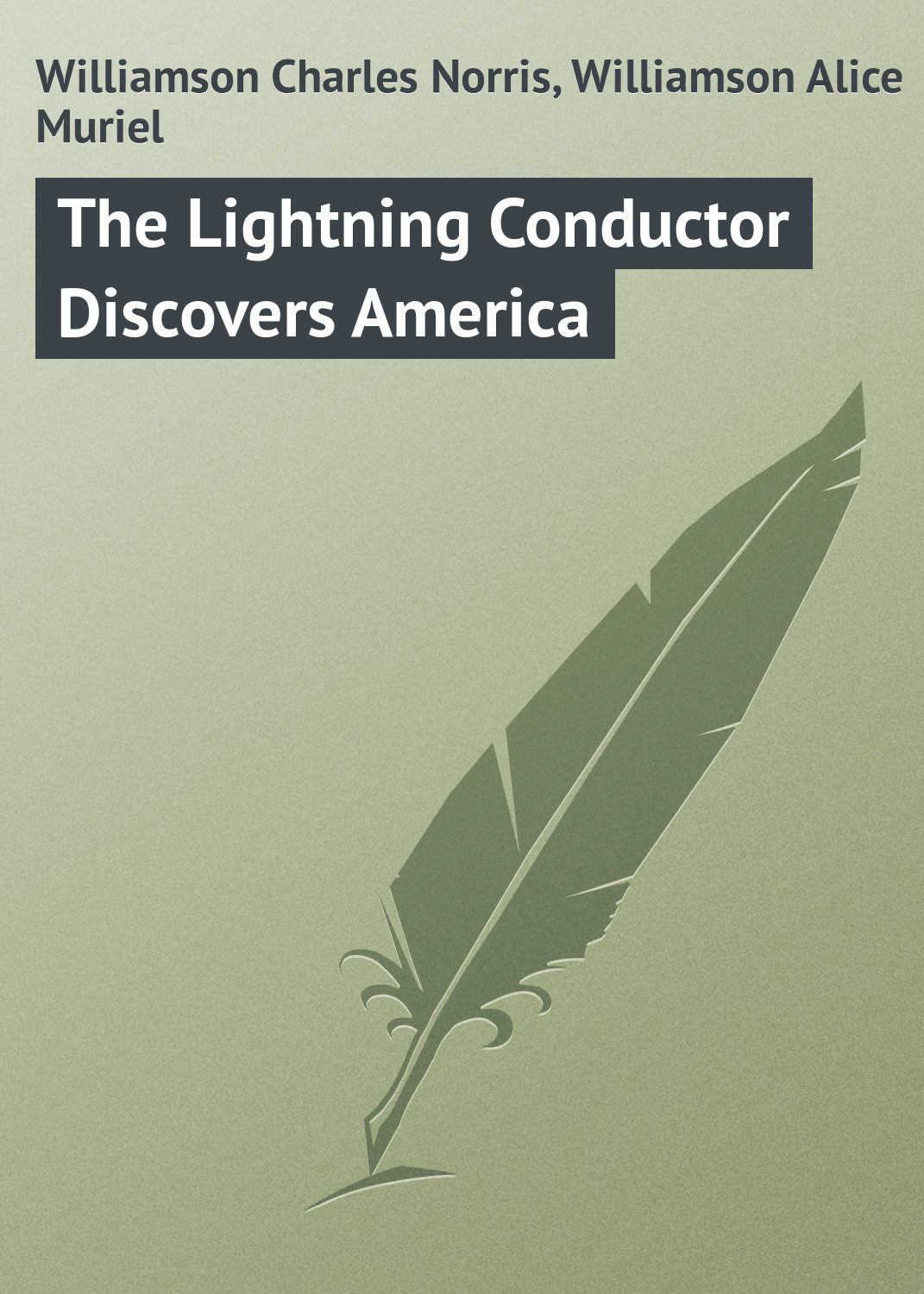 Williamson Charles Norris The Lightning Conductor Discovers America цены онлайн