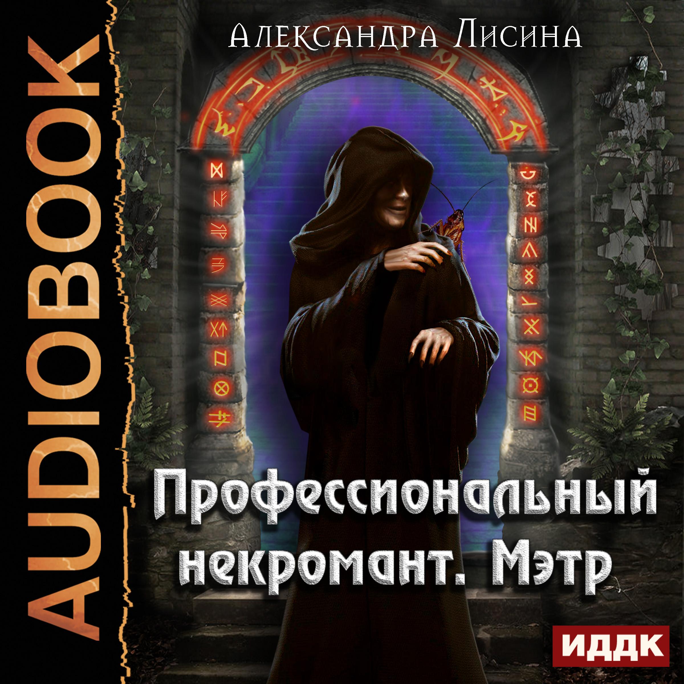 Александра Лисина Профессиональный некромант. Мэтр александра лисина сказочный переполох