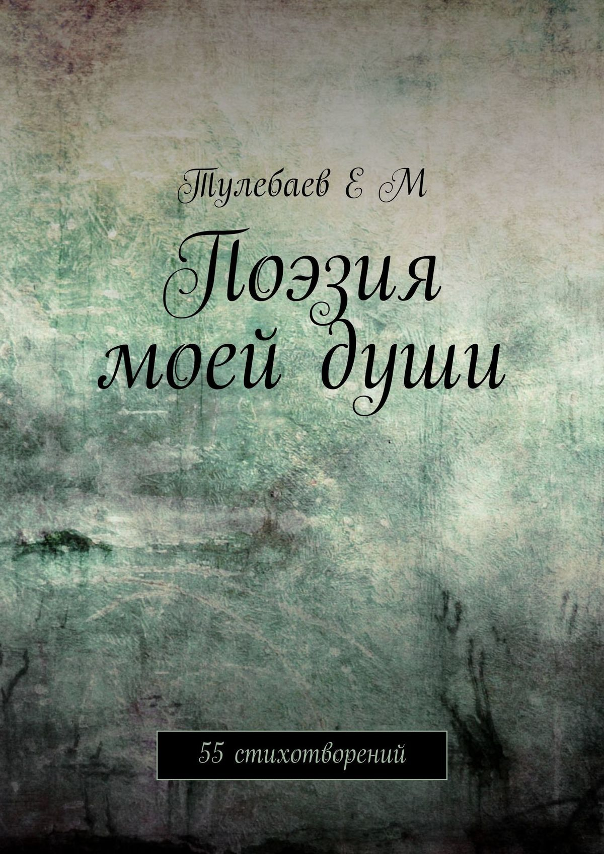 Ерлан Маратович Тулебаев Поэзия моейдуши. 55 стихотворений алеша кравченко терпкая лирика сборник стихотворений