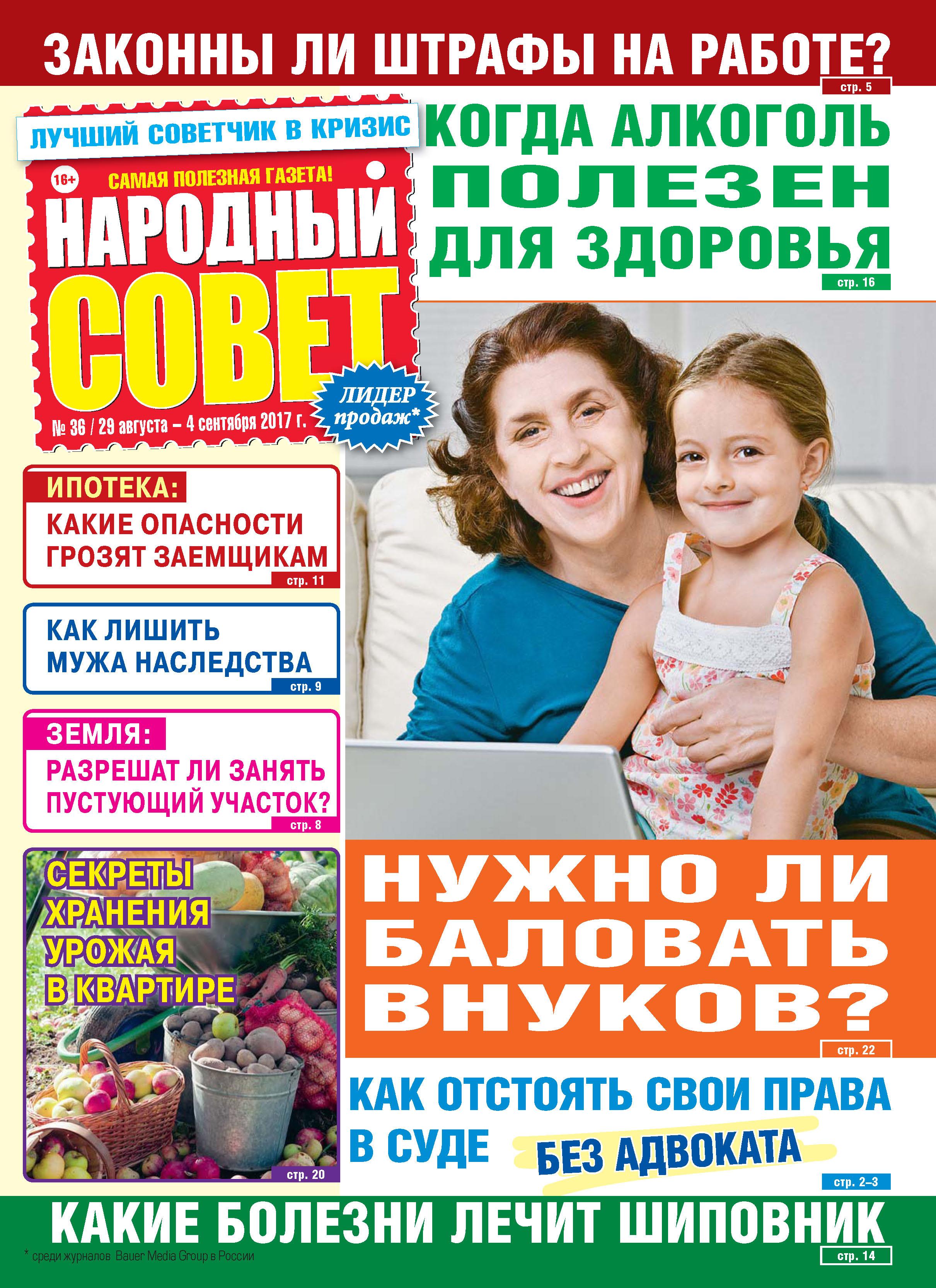 Отсутствует Народный совет №36/2017