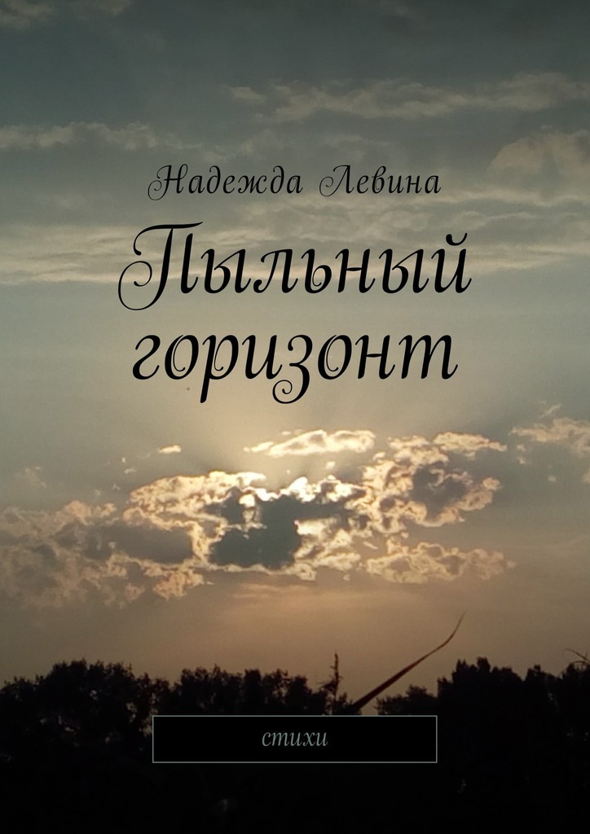 Надежда Левина Пыльный горизонт. Стихи