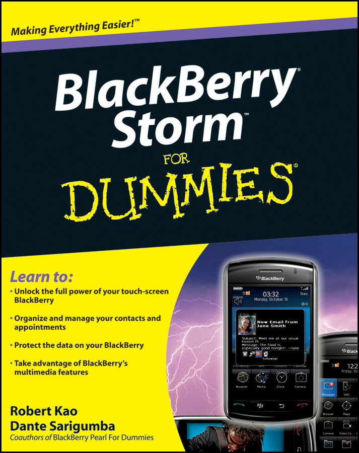 Robert Kao BlackBerry Storm For Dummies laptop palmrest