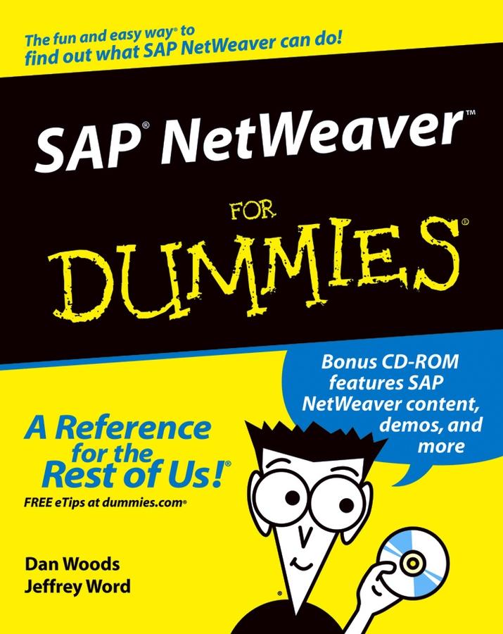 Dan Woods SAP NetWeaver For Dummies security in sap netweaver 7 0 application server abap
