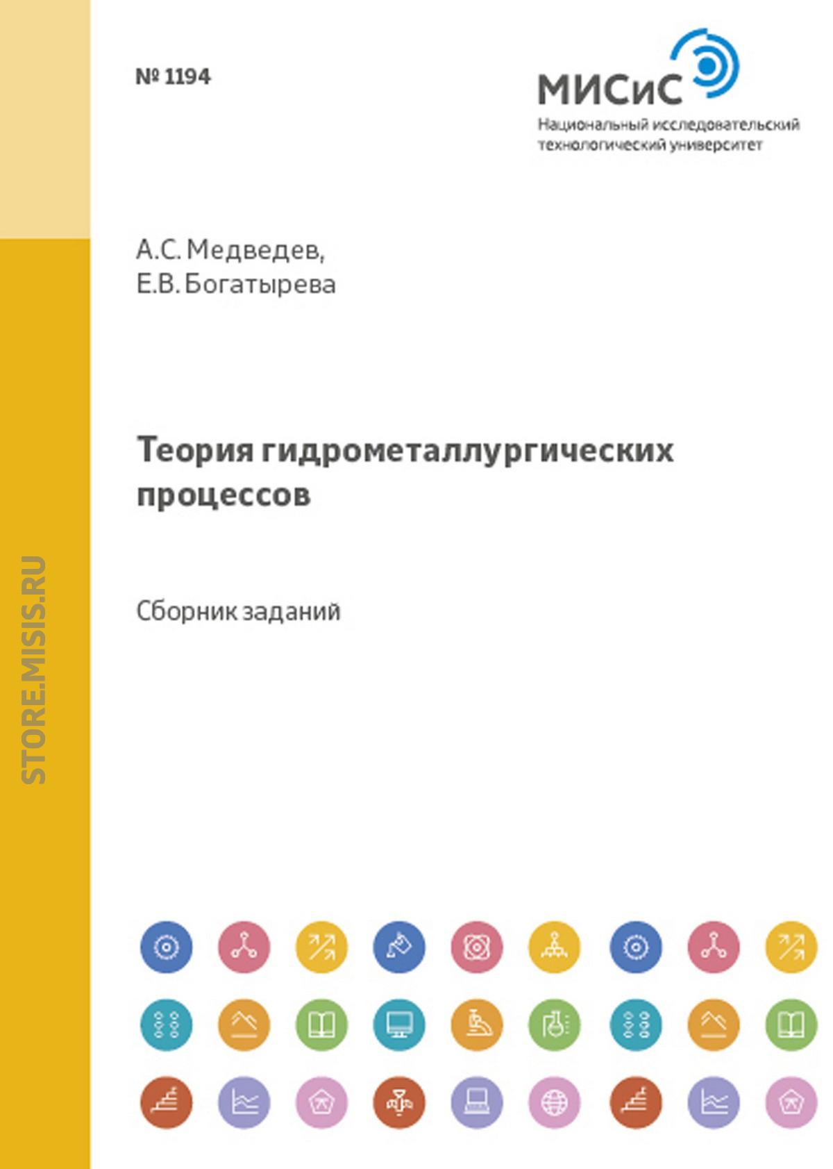 Елена Богатырева Теория гидрометаллургических процессов