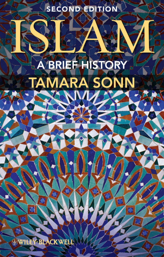 Tamara Sonn Islam. A Brief History victims stories and the advancement of human rights