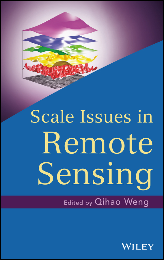цена на Qihao Weng Scale Issues in Remote Sensing