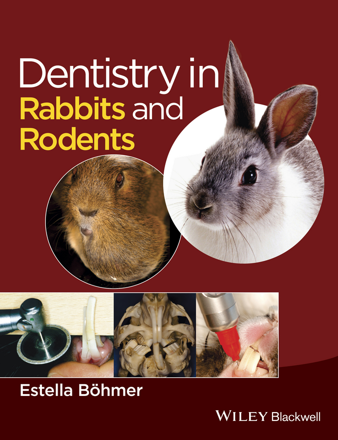 цена Estella Böhmer Dentistry in Rabbits and Rodents в интернет-магазинах