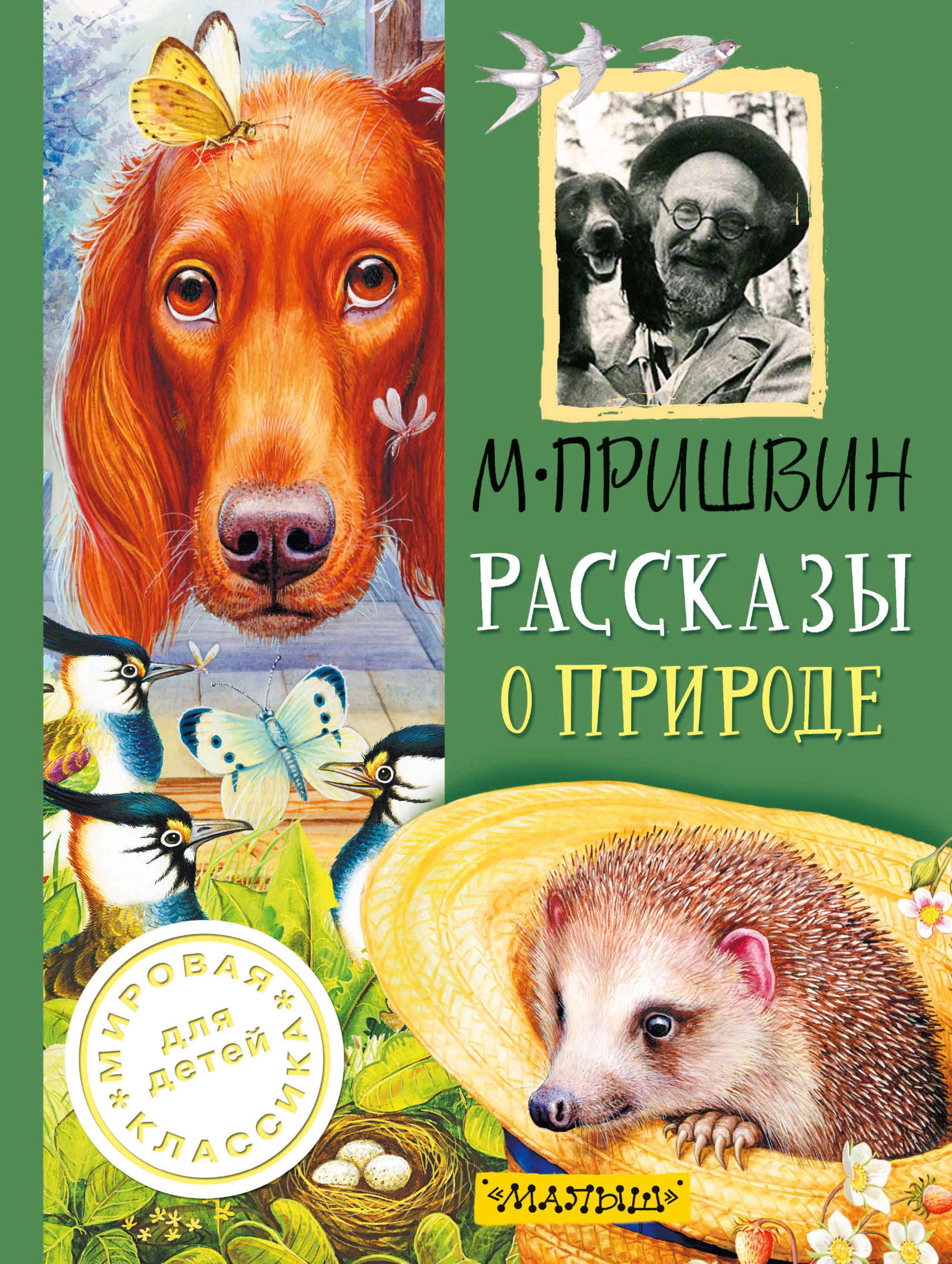 М. М. Пришвин Рассказы о природе м м пришвин лесные рассказы