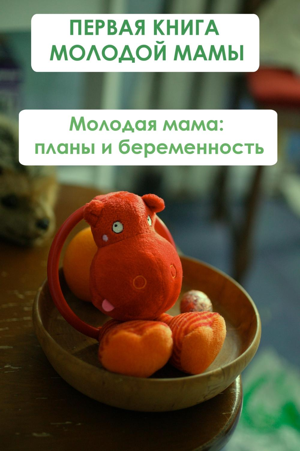 Илья Мельников Молодая мама: планы и беременность