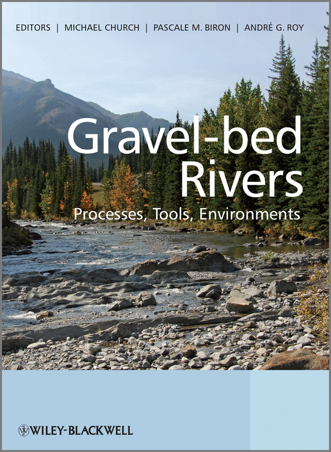 Фото - Andre Roy Gravel Bed Rivers. Processes, Tools, Environments the bed of procrustes