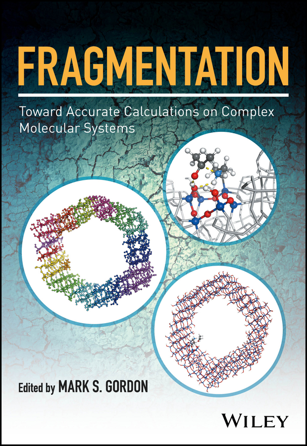 Mark Gordon S. Fragmentation: Toward Accurate Calculations on Complex Molecular Systems oana cazacu dynamic damage and fragmentation