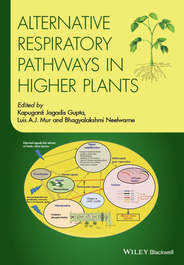 Bhagyalakshmi Neelwarne Alternative Respiratory Pathways in Higher Plants недорго, оригинальная цена