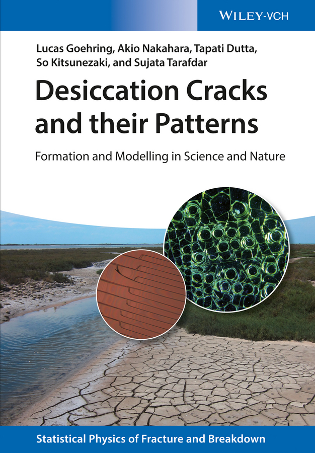Фото - Lucas Goehring Desiccation Cracks and their Patterns. Formation and Modelling in Science and Nature concise colour block and circle pattern design men s slippers