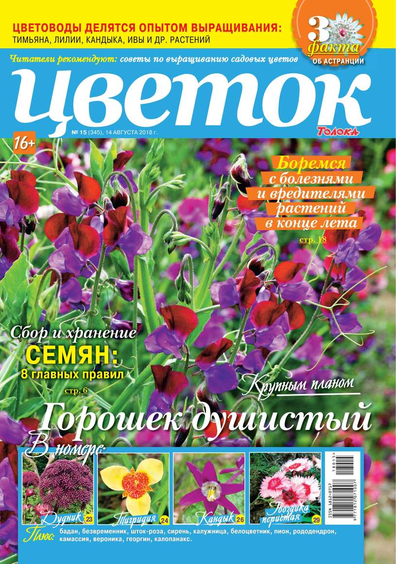 Редакция журнала Цветок Цветок 15-2018 редакция журнала цветок цветок 05 2018