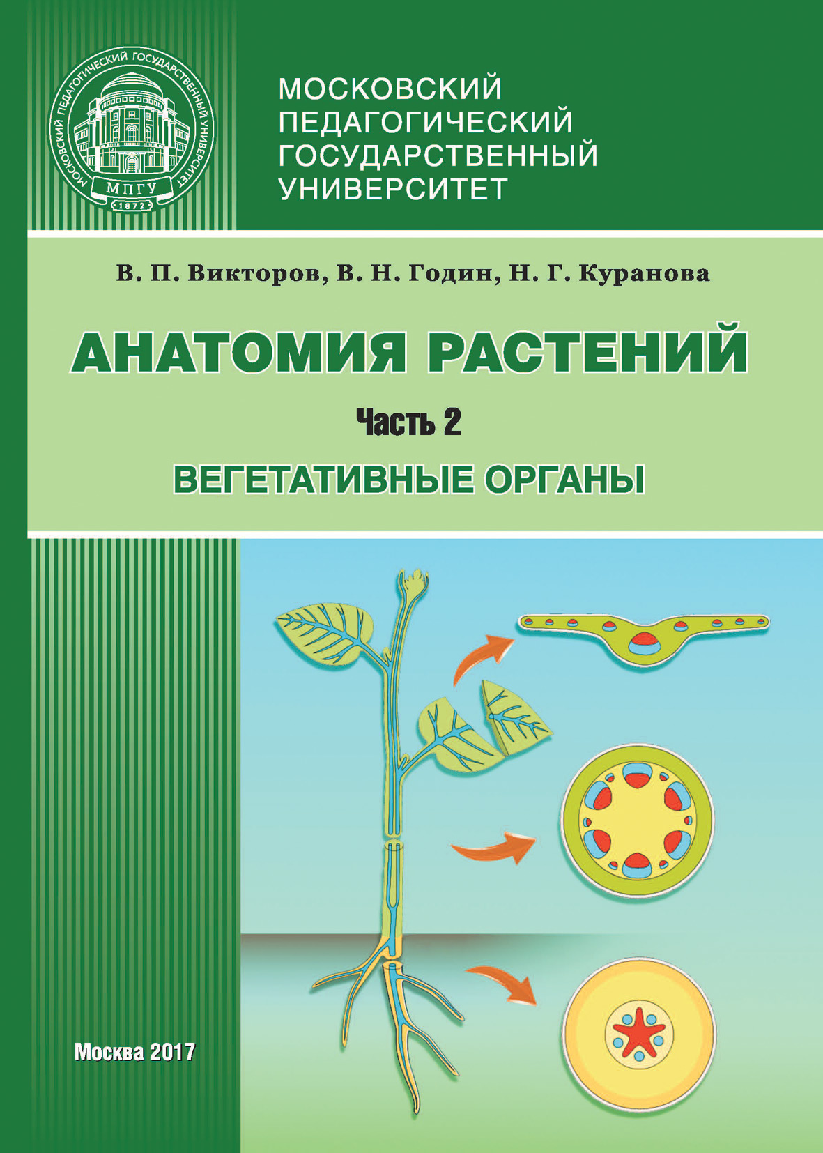 В. П. Викторов Анатомия растений. Часть 2. Вегетативные органы discovery анатомия секса
