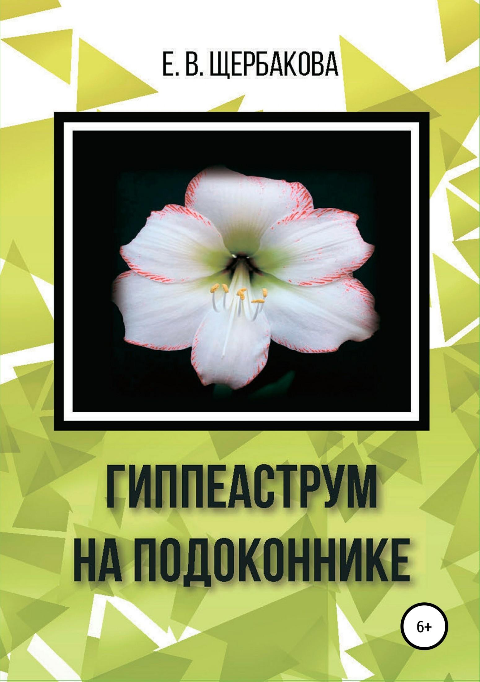 Елена Владимировна Щербакова Гиппеаструм на подоконнике