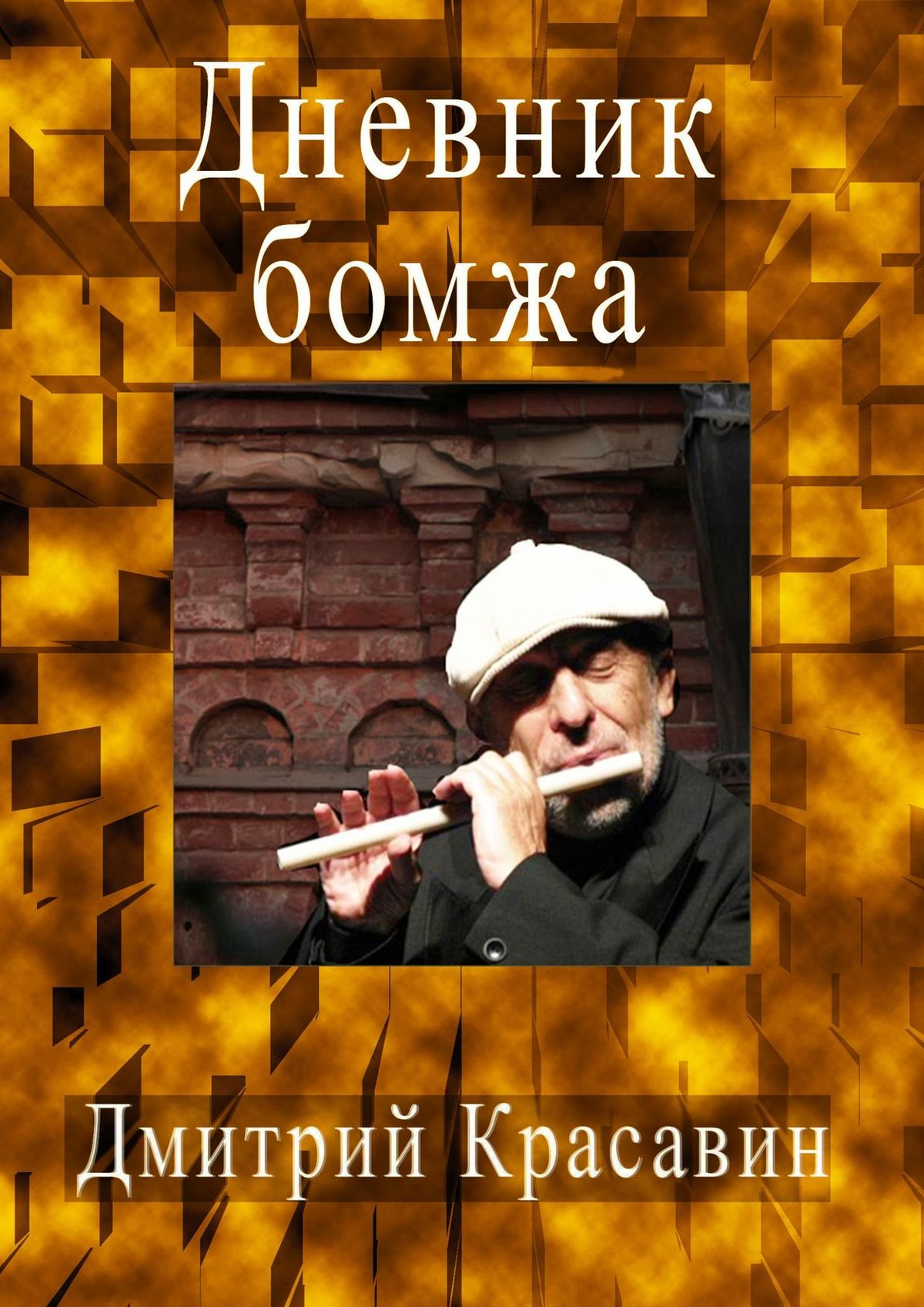 цена на Дмитрий Красавин Дневник БОМЖА