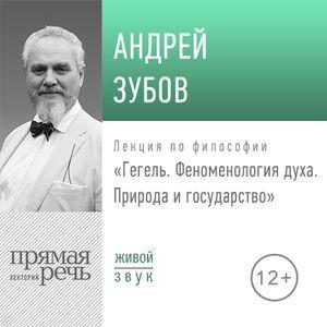 Андрей Зубов Лекция «Гегель. Феноменология духа. Природа и государство»
