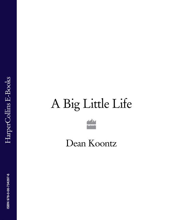 Dean Koontz A Big Little Life dean koontz miasto