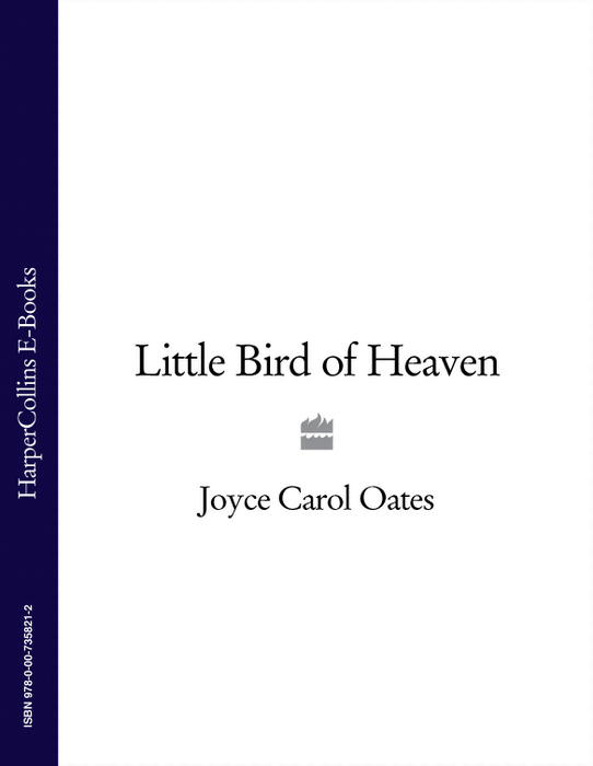Joyce Carol Oates Little Bird of Heaven jennifer joyce the little teashop of broken hearts