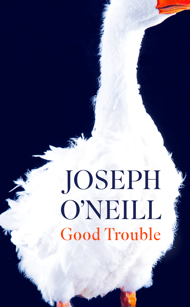 цены Joseph O'Neill Good Trouble