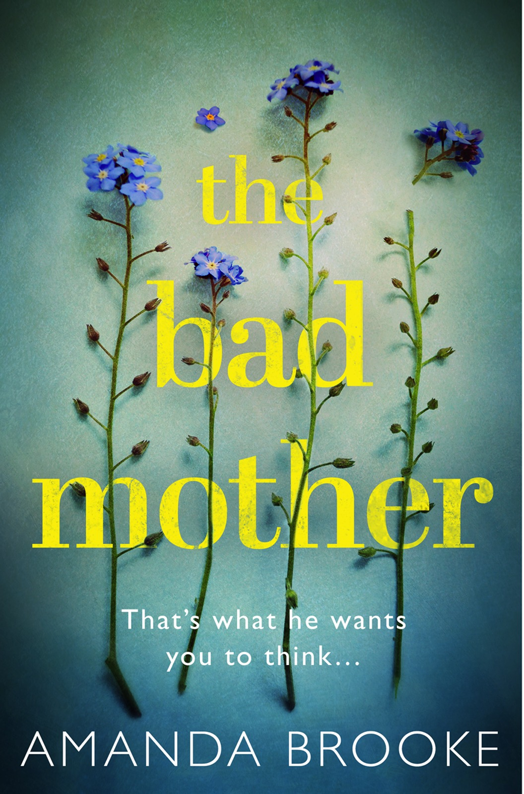 Amanda Brooke The Bad Mother: The addictive, gripping thriller that will make you question everything amanda stevens the dollmaker