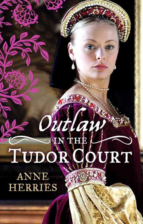 Anne Herries OUTLAW in the Tudor Court: Ransom Bride / The Pirate's Willing Captive kathryn stockett the help