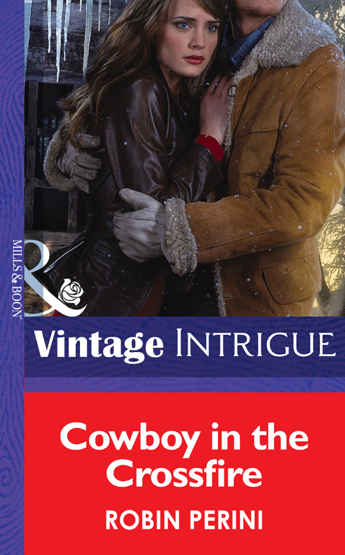 Robin Perini Cowboy in the Crossfire blake r the hygge holiday