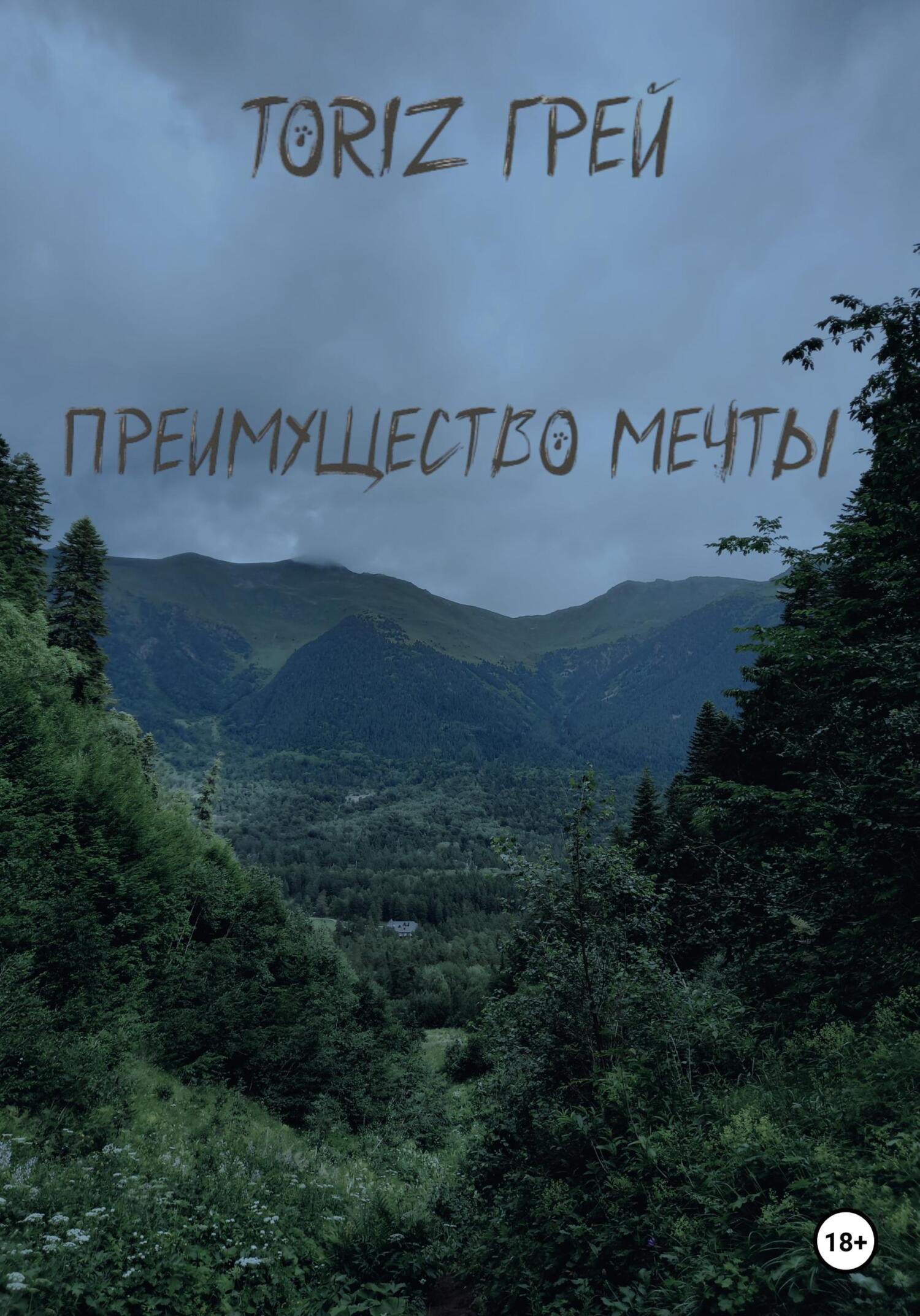 Фото - ТориZ Грей Преимущество мечты все не просто