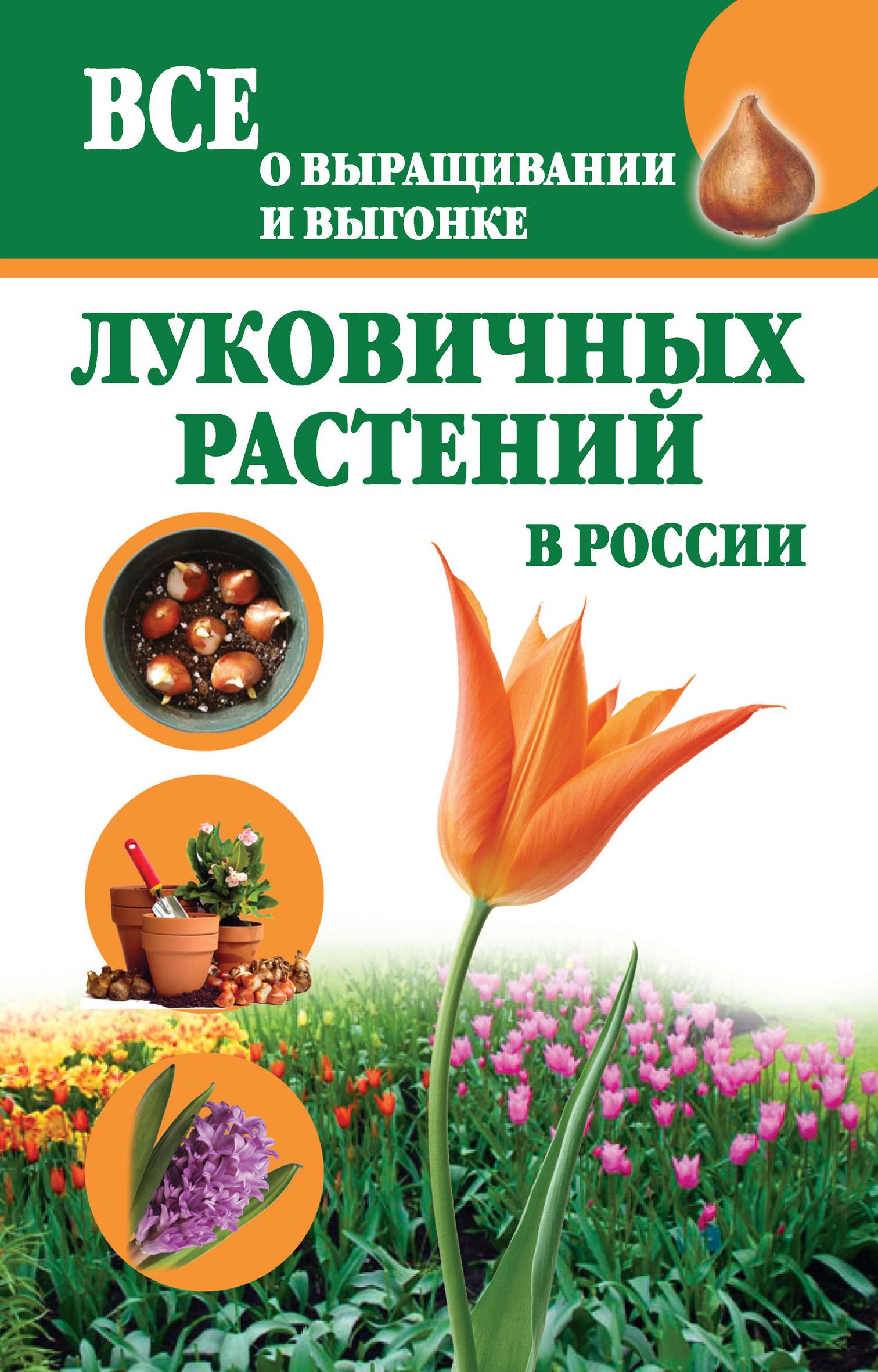 Татьяна Литвинова Все о выращивании и выгонке луковичных растений в России