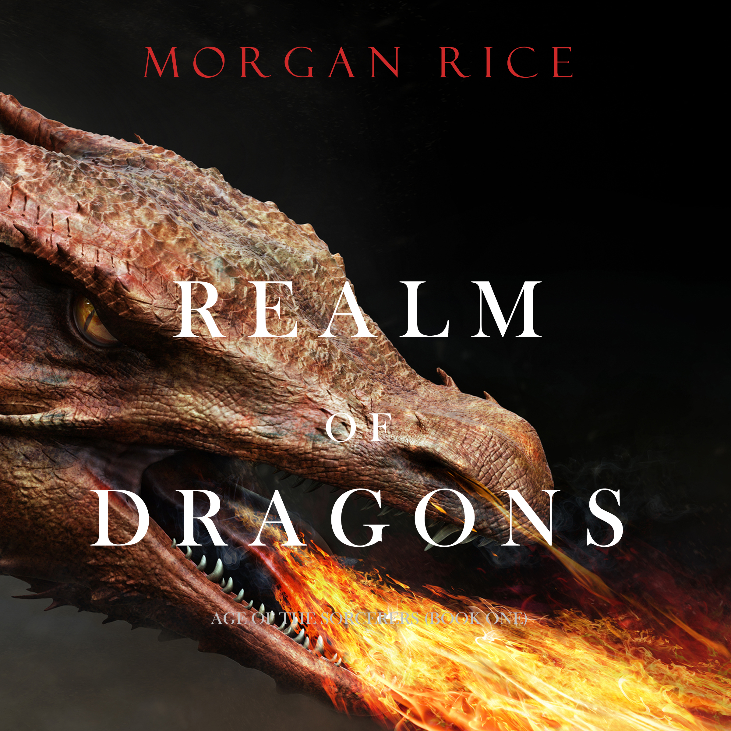 Морган Райс Realm of Dragons martha alderson the plot whisperer book of writing prompts