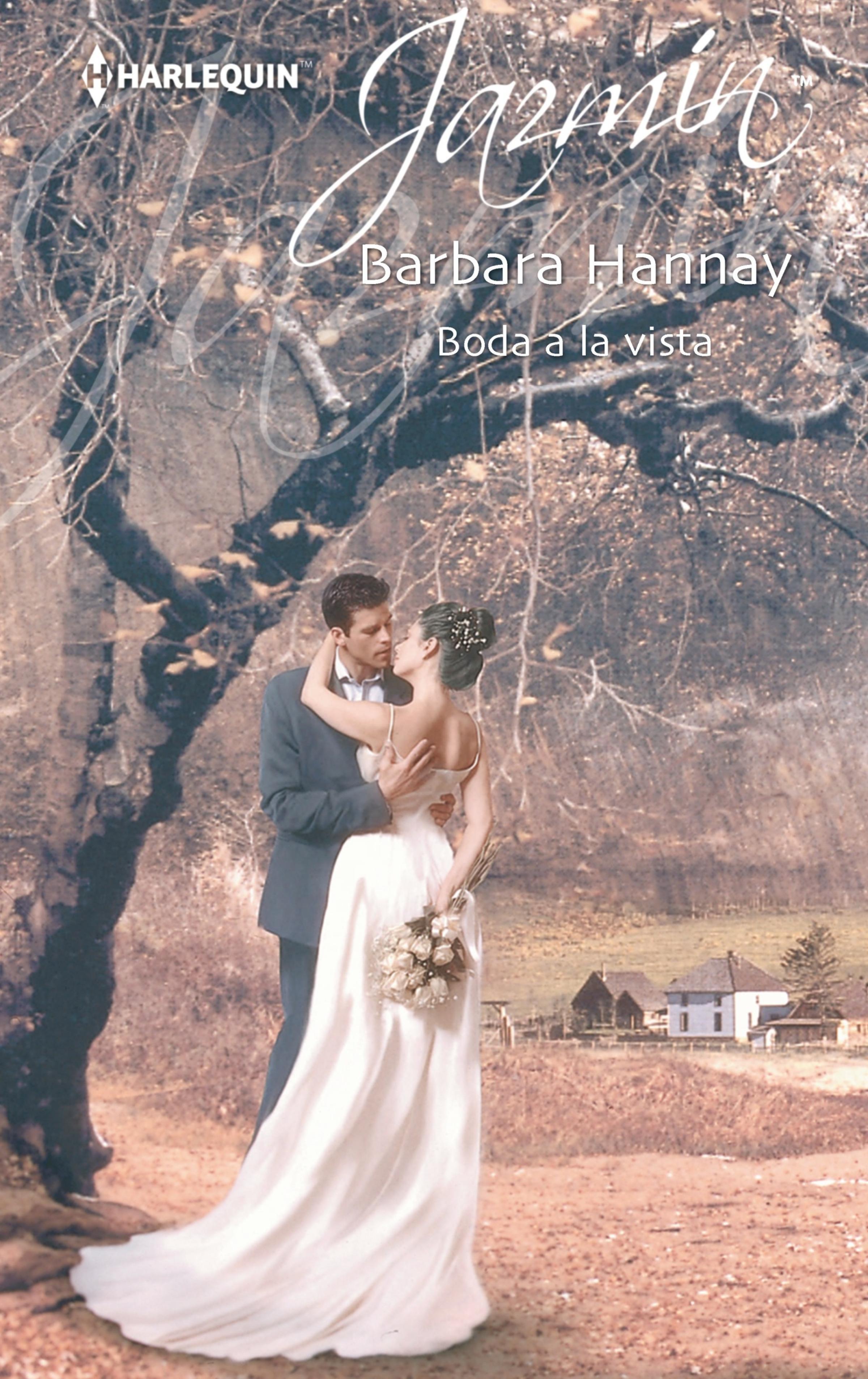 Barbara Hannay Boda a la vista barbara hannay the wedding countdown