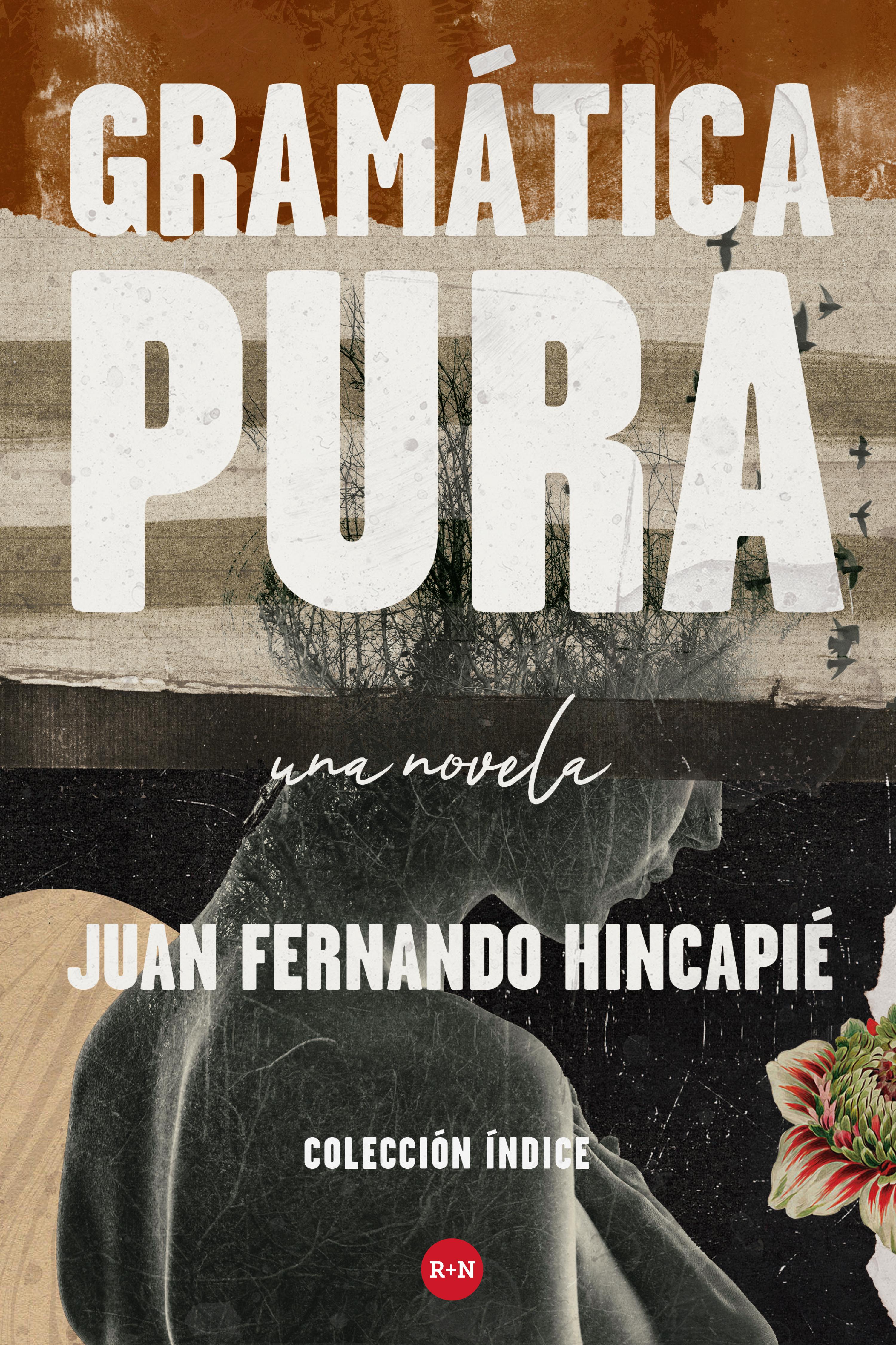 Juan Fernando Hincapié Gramática pura concepcion gonzalez una nueva vida