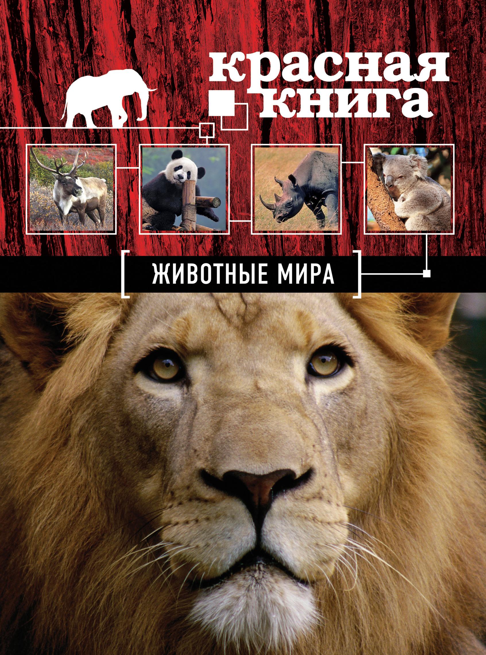 Оксана Скалдина Красная книга. Животные мира оксана скалдина красная книга животные мира