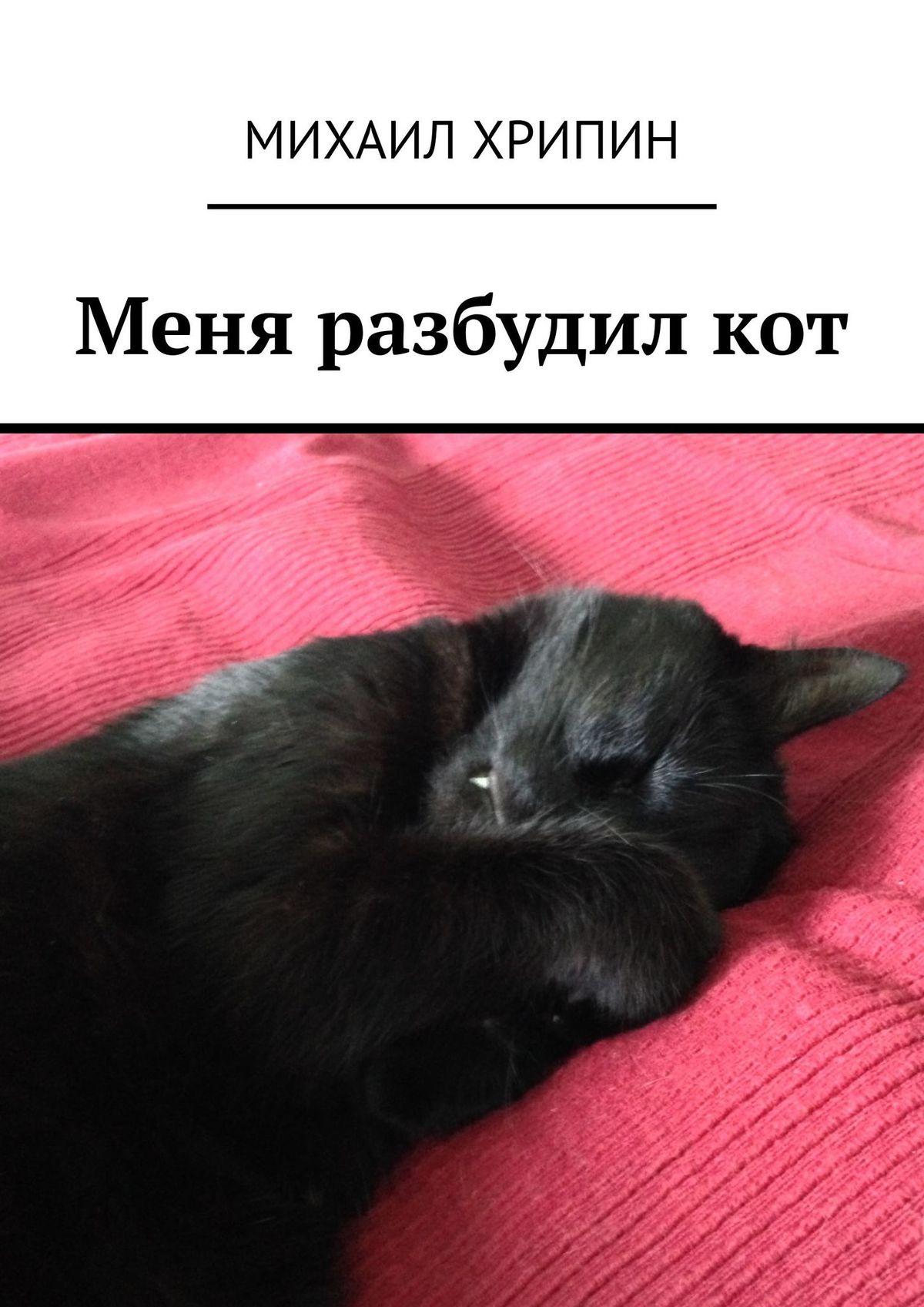 Михаил Хрипин Меня разбудил кот (сборник) десять рассказов