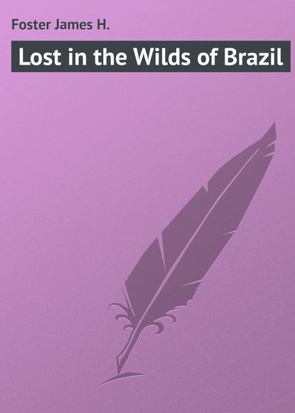 Фото - Foster James H. Lost in the Wilds of Brazil james h the europeans