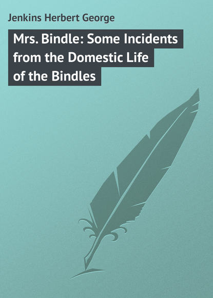 Jenkins Herbert George Mrs. Bindle: Some Incidents from the Domestic Life of the Bindles domestic life in palestine
