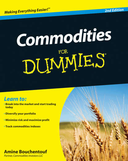 Amine Bouchentouf Commodities For Dummies amine bouchentouf arabic for dummies