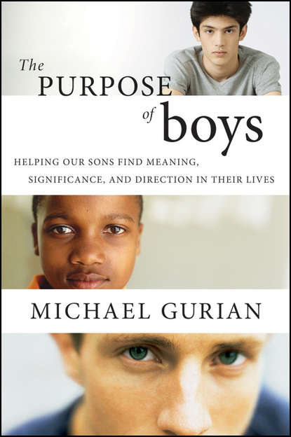 Michael Gurian The Purpose of Boys. Helping Our Sons Find Meaning, Significance, and Direction in Their Lives michael gurian nurture the nature understanding and supporting your child s unique core personality