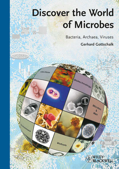 Gerhard Gottschalk Discover the World of Microbes. Bacteria, Archaea, Viruses a novel technique for microencapsulation of probiotic bacteria